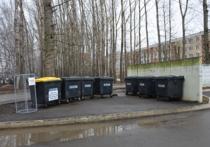 Раздельный сбор мусора, который предстоит освоить нам, в столице Мордовии уже реализован