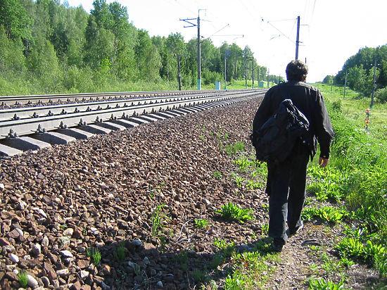 Москвичи смогут отправиться на пикник к железнодорожным переездам