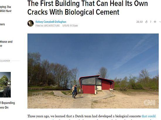 Голландцы построили здание, которое себя само ремонтирует