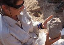 Найдены каменные орудия, которые были созданы до появления людей