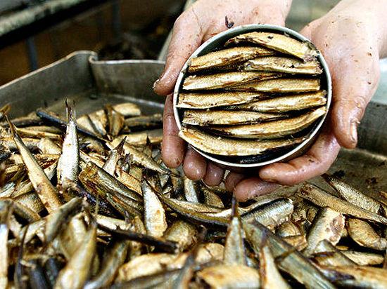 Крупнейший рыбозавод Латвии остановил работу из-за российского эмбарго