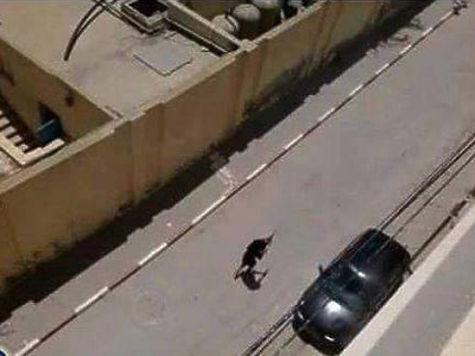 теракт в тунисе