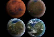 Американцы создают организмы, которые сделают Марс, похожим на нашу Землю