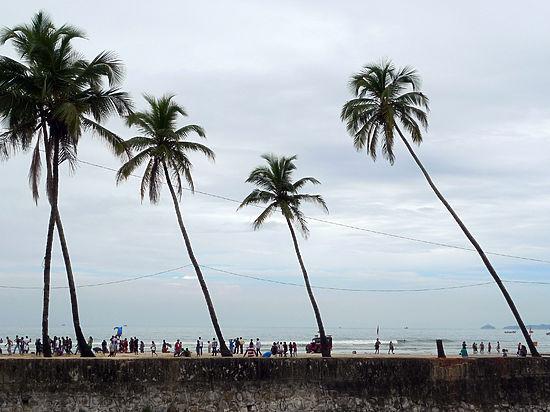 На Филиппинах обнаружен вирус MERS