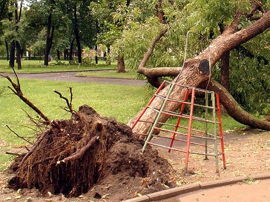 Ураган в  Павлово-Посадском районе сорвал крыши домов