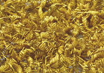 В Дании археологи раскопали 2 тысячи золотых спиралей Бронзового века