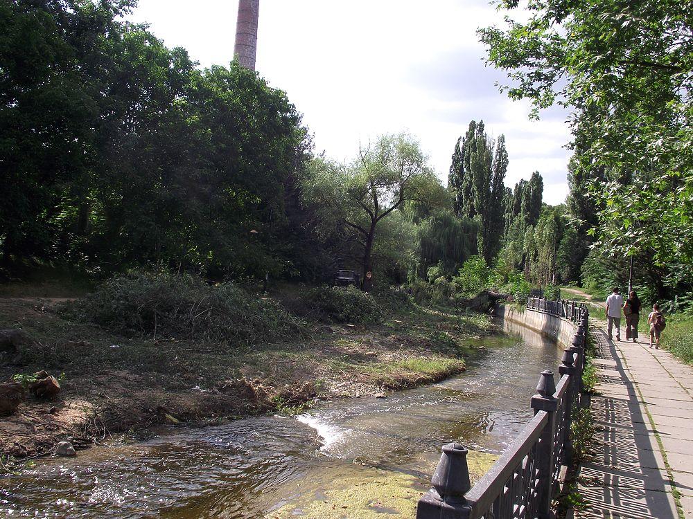 Симферопольские коммунальщики очищают русло Салгира от живых деревьев