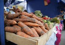 За год антисанкций цены упали почти на все продукты