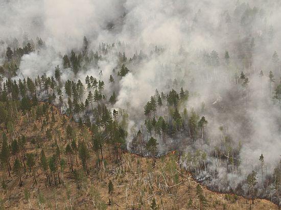Катастрофа на Байкале: дым гонит жителей, туристов и зверей