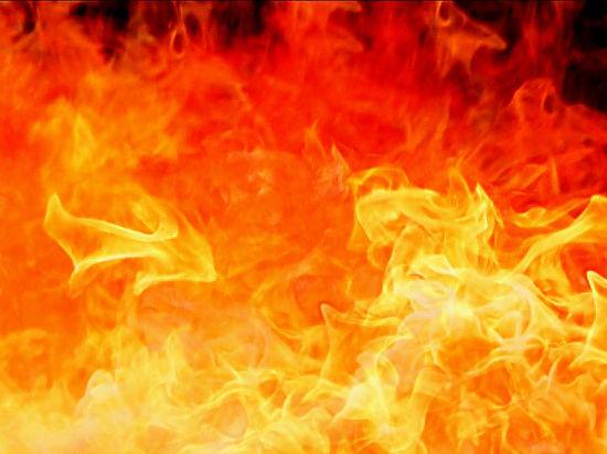 Причина пожаров - сухая погода и человеческий фактор