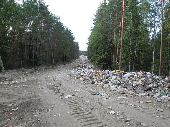 Руководство  района, пролоббировавшее частную мусороуборочную фирму, теперь не знает, как выйти из создавшегося положения