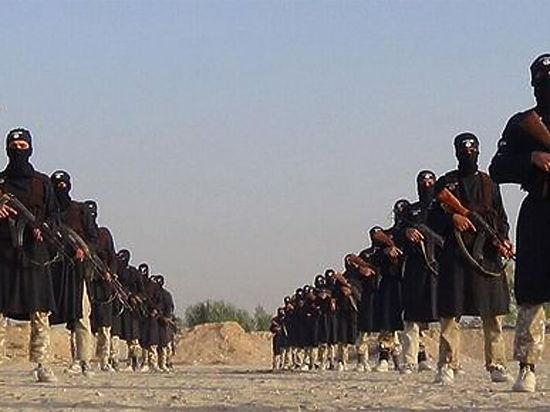 Песков рассказал, кто может победить ИГИЛ
