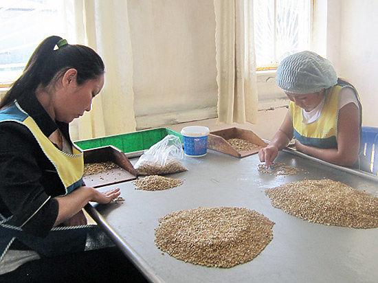 В Бурятии начали производство исконно бурятского кушанья