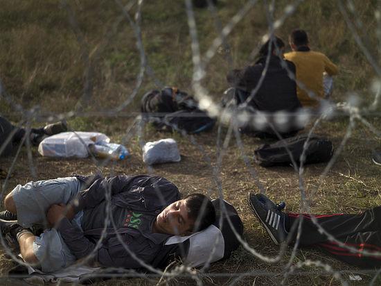 Беженец под ключ: сирийцы описали в блогах «путь шахидов» в Европу