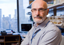 Нобелевскую премию в области медицины может получитьвыпускник МГУ