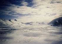 Микроорганизмы из вечных льдов помогают лечить рак