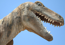 Не все динозавры были хладнокровными тварями