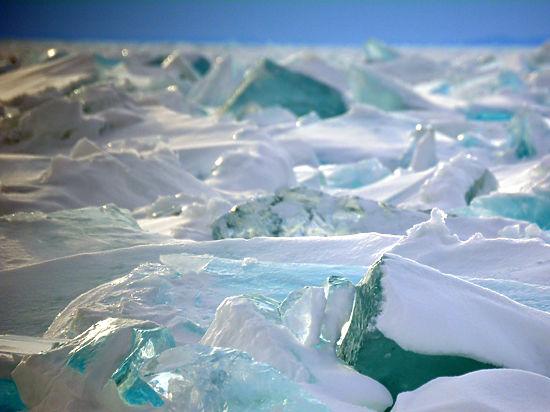 Начальник антарктической экспедиции Валерий Лукин: «В прошлом году у нас было 70 научных проектов, в этом будет 56»