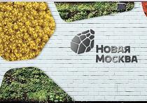 Логотип Новой Москвы: схема разделки туши или убогая черепаха?