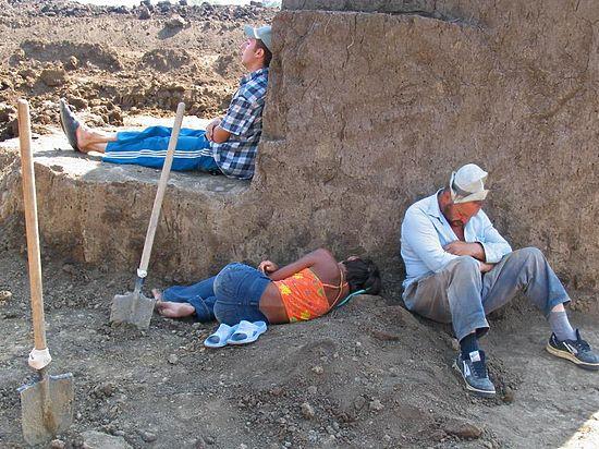 Долгота сна у горожан Европы и у аборигенов Танзании одинаковыми оказались