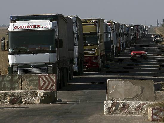 Из-за блокады Крыма на Херсонщине режут коров
