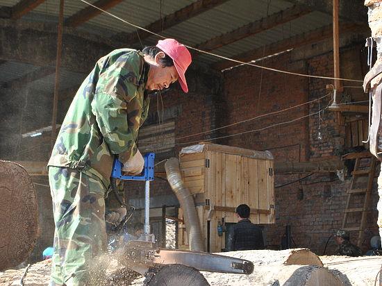 В лесную промышленность Приморья пришли грамотные арендаторы