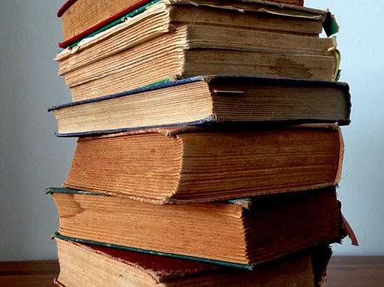 Еще одну московскую библиотеку вынудили убрать книгу про «национализмы»