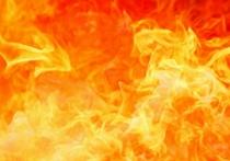 Рабочий погиб в результате взрыва на лесоперерабатывающем заводе в Братске