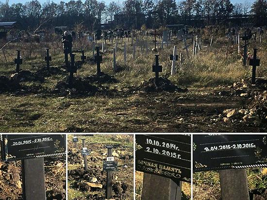 Названы причины появления массового захоронения новорожденных детей на Ставрополье