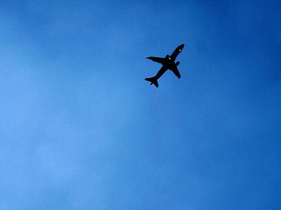 Полеты были приостановлены 6 ноября по указу президента