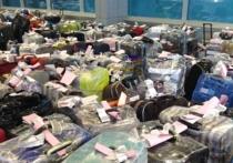 Бесхозная сумка, обнаруженная в «Домодедово» и перепугавшая всех, на самом деле оказалась обыкновенным багажом пассажира