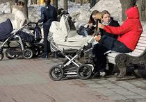 Вице-премьер Ольга Голодец, курирующая в правительстве «социалку», считает, что в будущем году следует разрешить российским семьям трать 20 тыс рублей из материнского капитала до достижения ребенком трехлетнего возраста