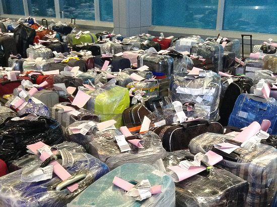 Проблемный чемодан: багажный коллапс в Египте аукнулся в «Домодедово»