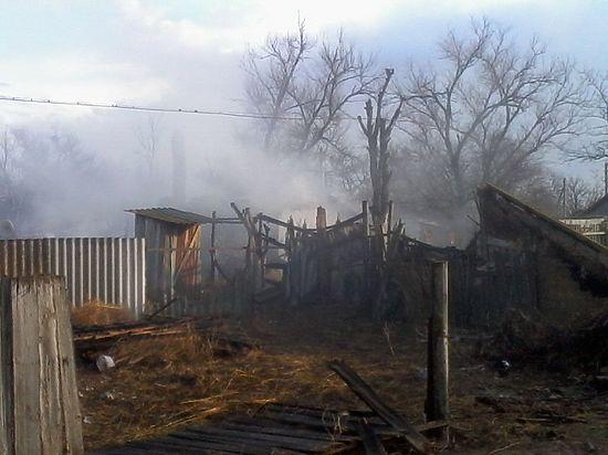 Убийцы московского полицейского скрывались в доме калмыцкой пенсионерки