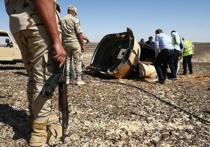Французский авиаэксперт, президент Комитета по соблюдению авиационной безопасности Жерар Арну, в интервью Liberation изложил свою версию теракта на борту A321
