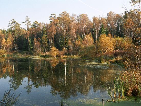 В Краcногорске уже негде строить, в ход пошли федеральные реки