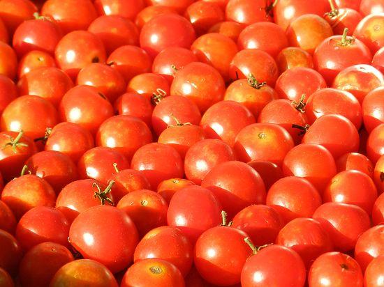Турецкую экономику разрушит эмбарго на томаты и огурцы
