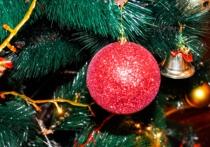 Новый год и Рождество без елки – это и не праздник вовсе