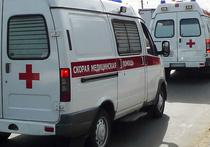 Рабочий погиб во вторник вечером на юге Москвы во время опилки  деревьев