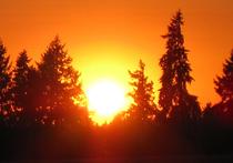 Солнце может «поджечь» Землю