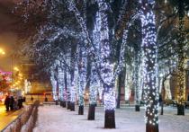 Обматывать деревья гирляндами на Новый год больше не будут столичные власти