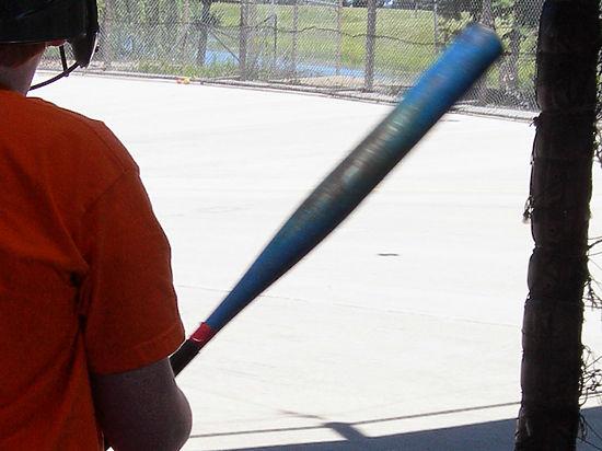 Сын убил мать бейсбольной битой из-за оценок в школе
