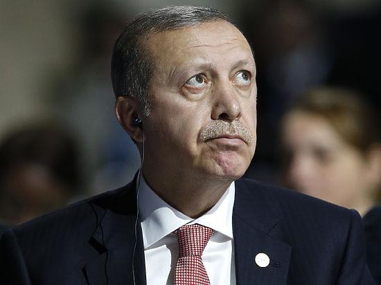 WikiLeaks сообщил о давних планах Эрдогана атаковать российский самолет
