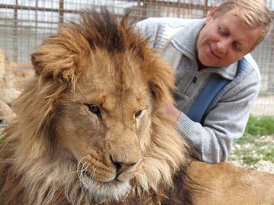 Директор сафари-парка «Тайган» опасается, что не доживет до суда