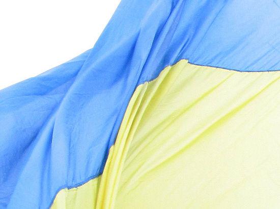 Глава задержанных в Киеве