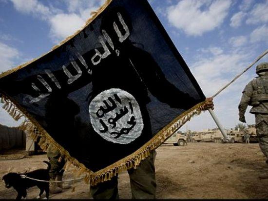 Названы объекты ИГ, которые отказались бомбить США