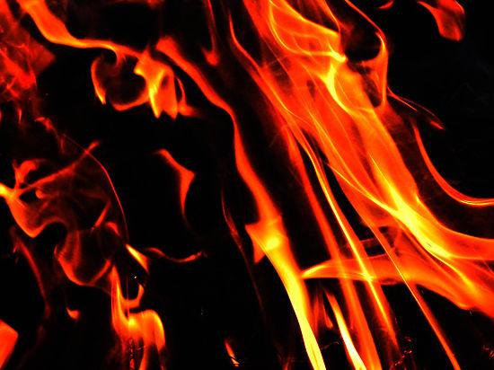 Причиной пожара в Подмосковье, где погибли дети, стала деревянная лошадь