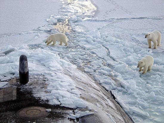 Радиация на Северном Полюсе: Арктика фонит и молит