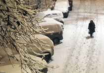 Нарышкин рассказал о любви к лыжам и пообещал москвичам снег