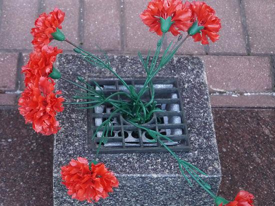 Цветы на могилах у кремлевской стены стали поводом для возмущения